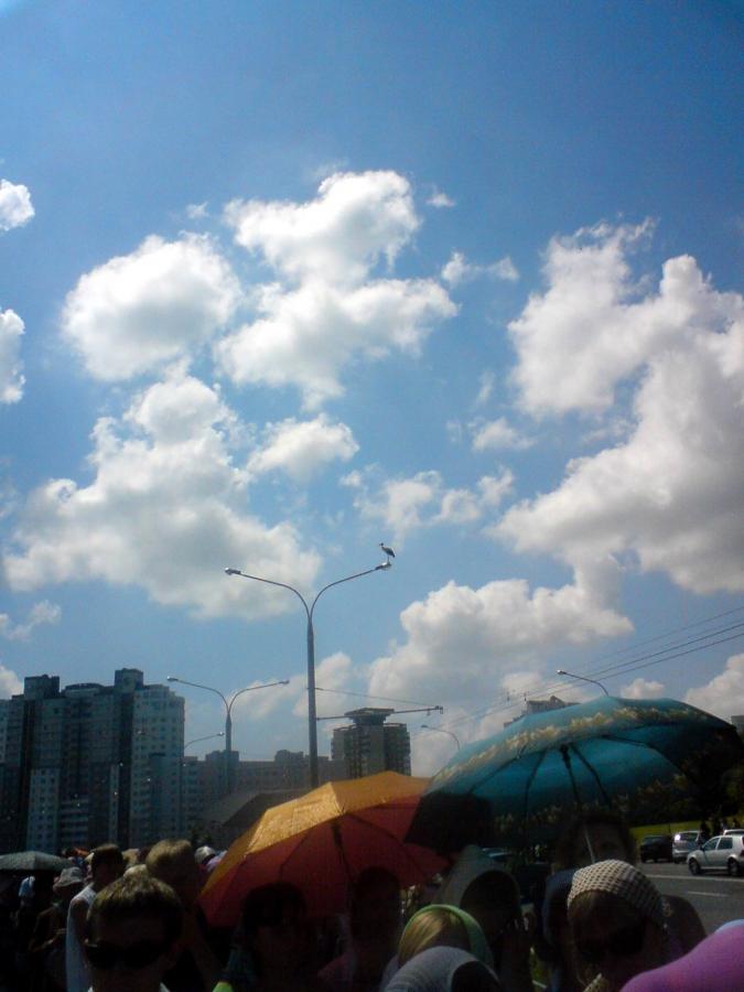 Как голубь с небес...