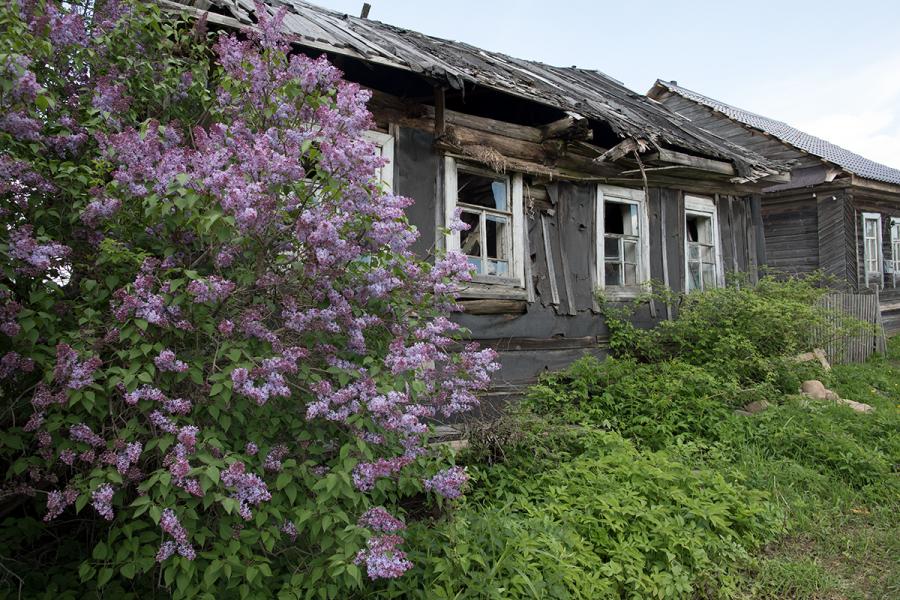Исчезающие деревни Тверской области