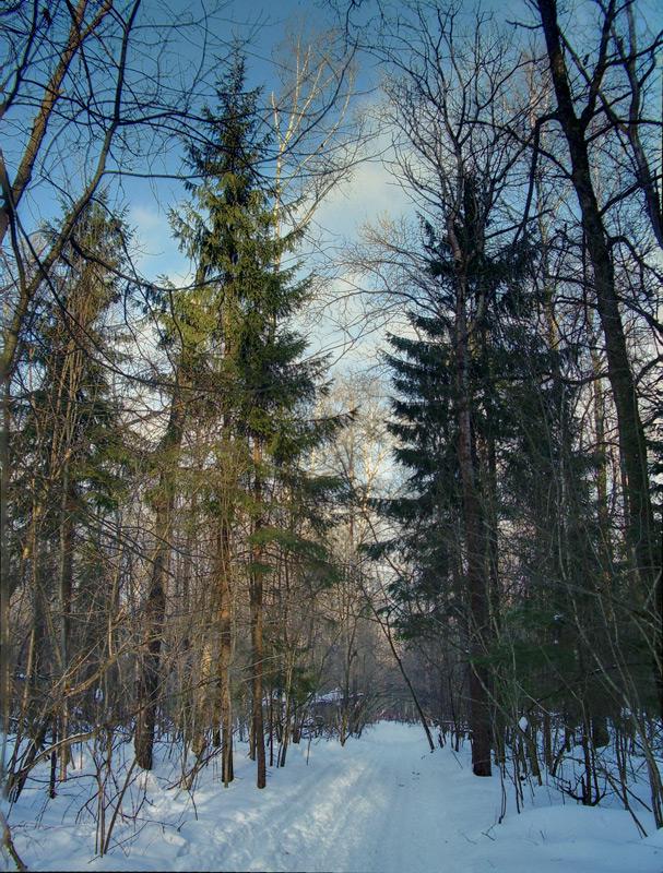 forestmart