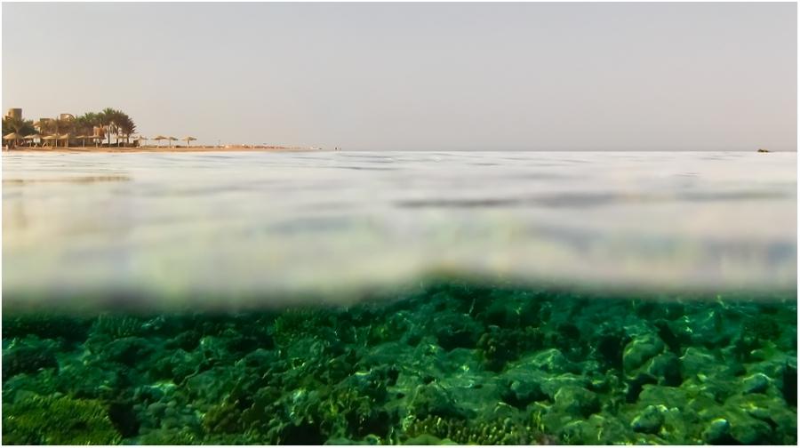 Взгляд из воды
