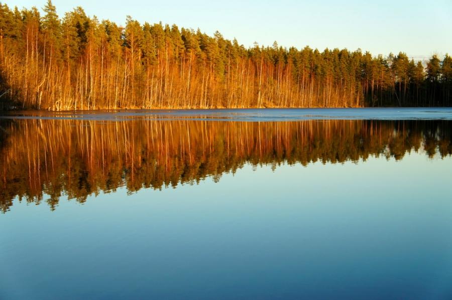 Весенний закат. Деревья греются. Озерная вода замерла и ждет когда сойдет п