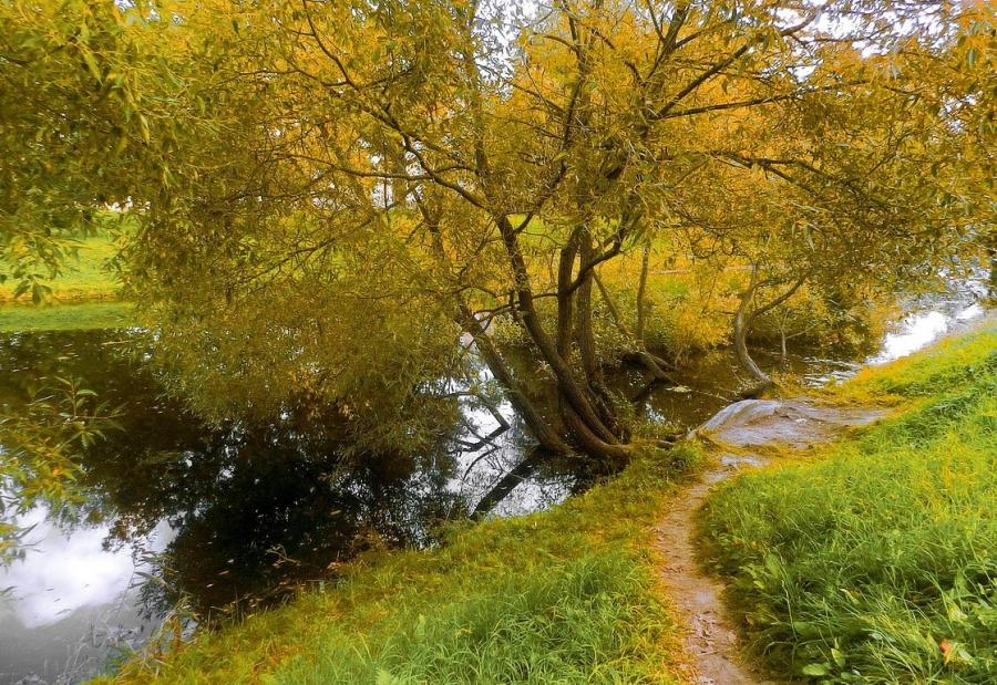 Осенний день в пасмурную погоду
