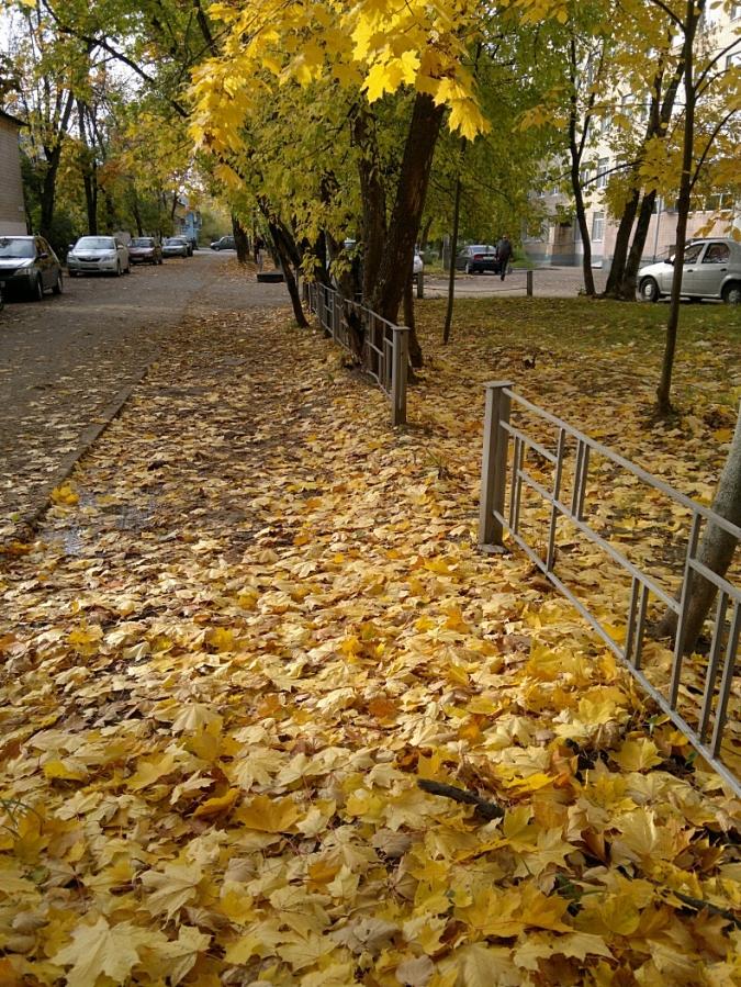 Осень в городе II