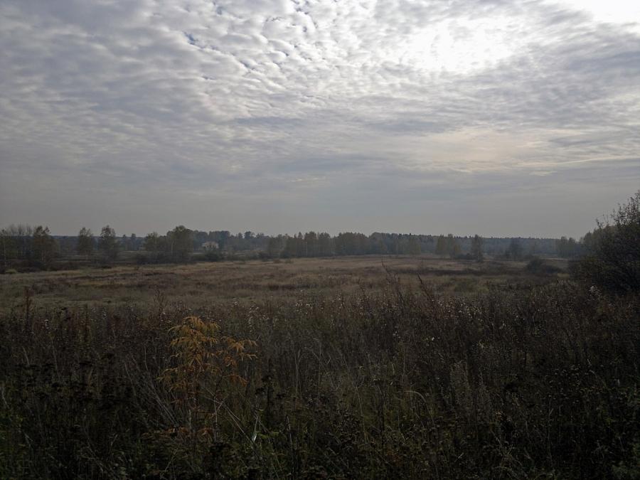 Окрестности Мишнево