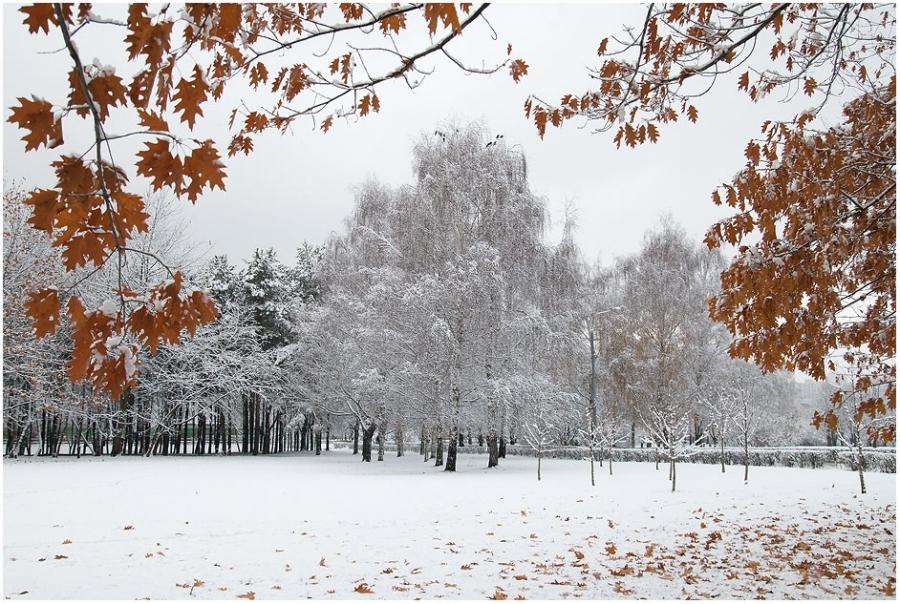 Из осени в зиму