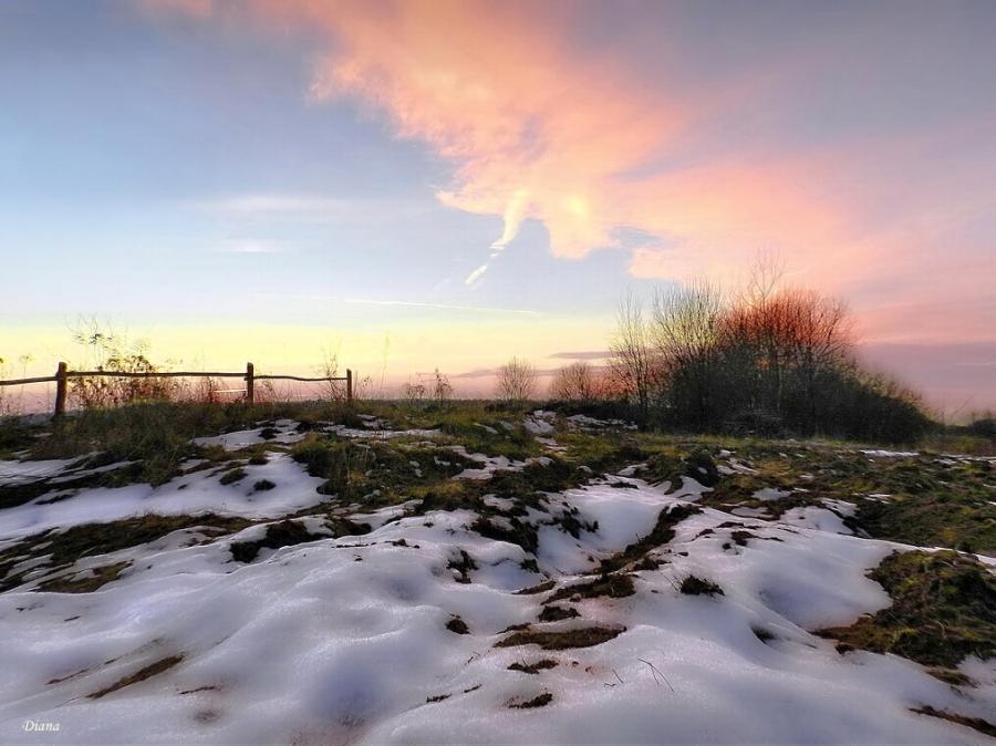 Птица белая нежно таяла светом розовым в декабре...
