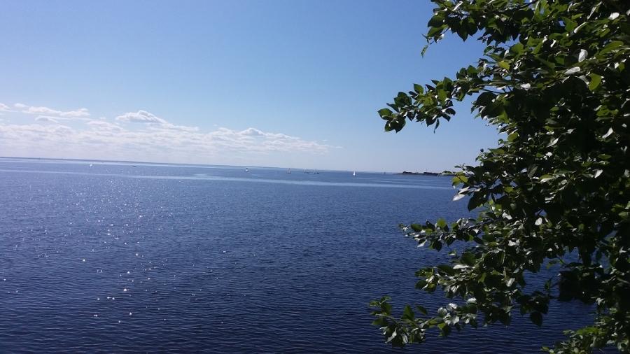 Летний день на заливе.