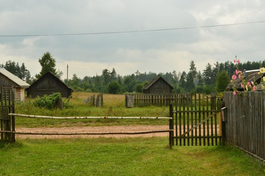 Вид из сельского двора