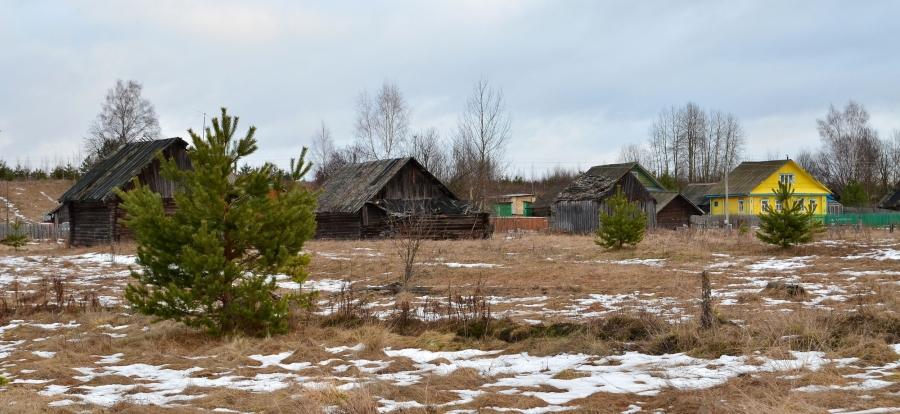 Деревня Астафьево под Новый Год.