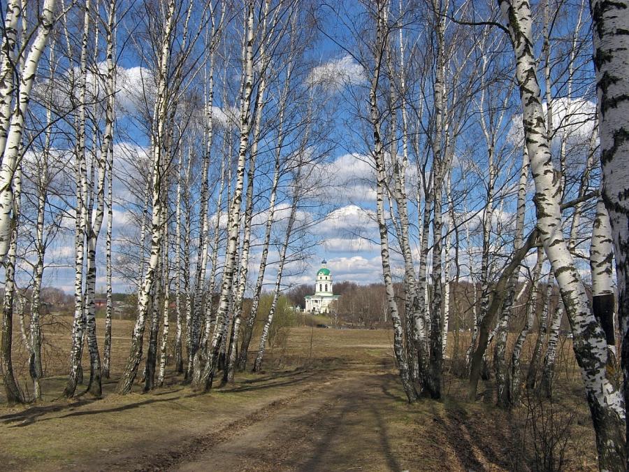 Вид на Никольский храм. Апрель:)