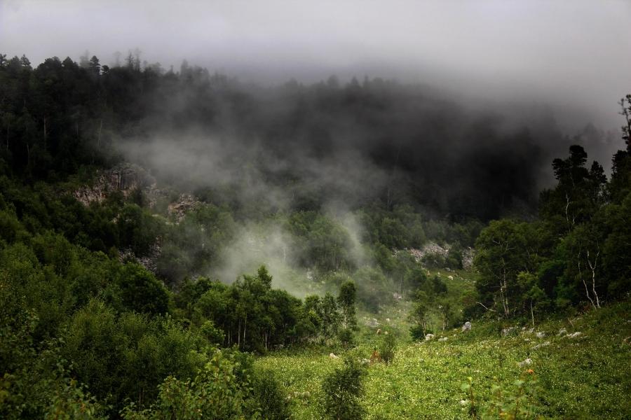 Туманный покров