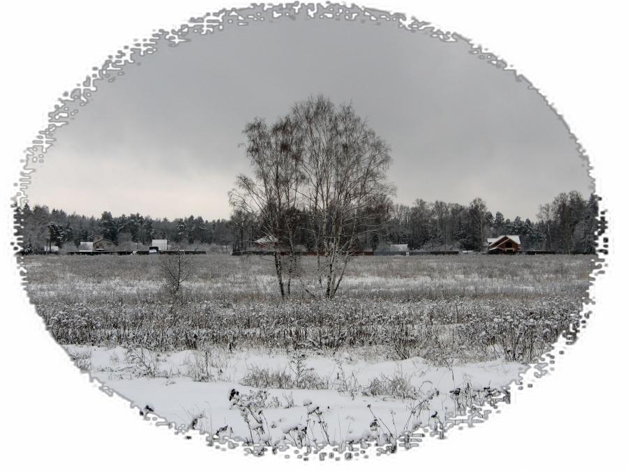 Среднерусская зима