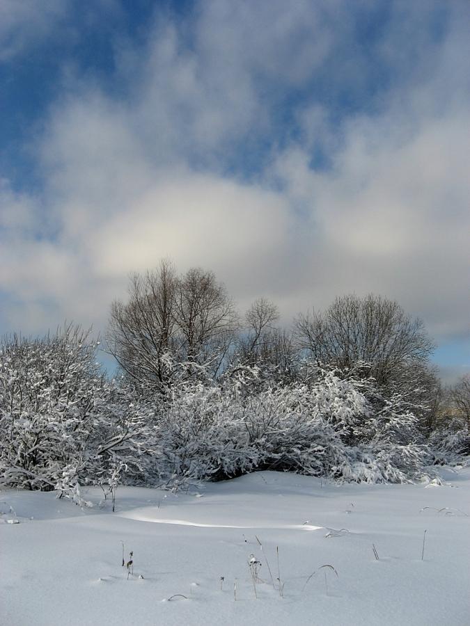 """""""Такого снегопада..."""" II"""