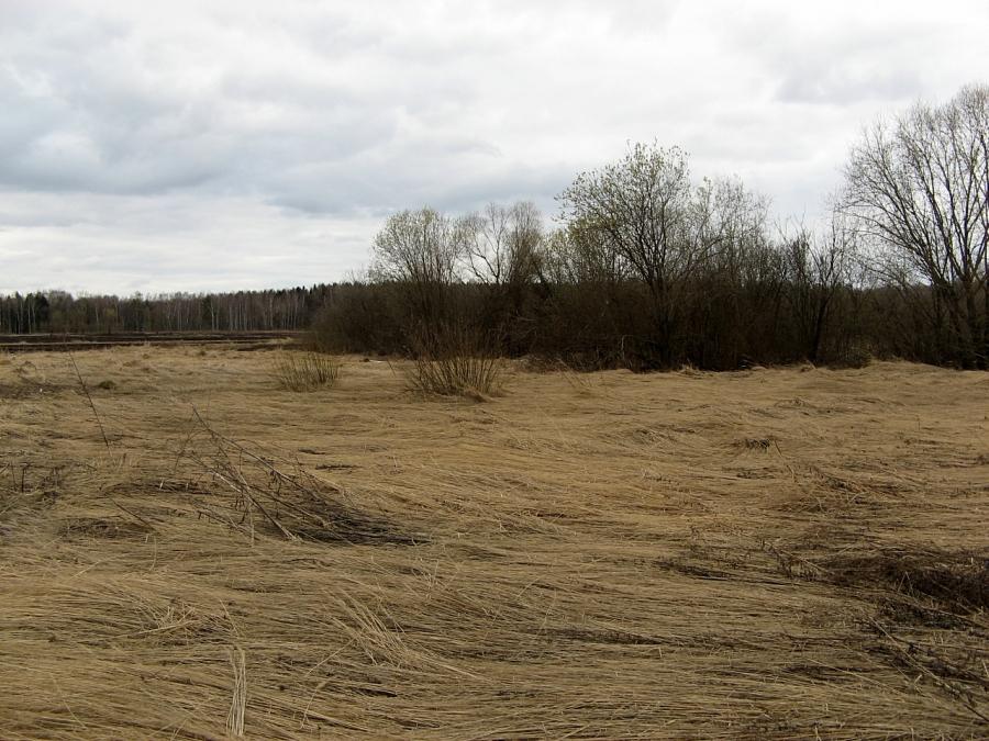Весна в полях...