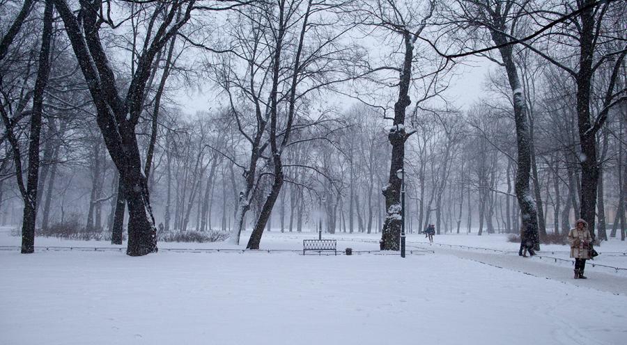Снег над Петербургом