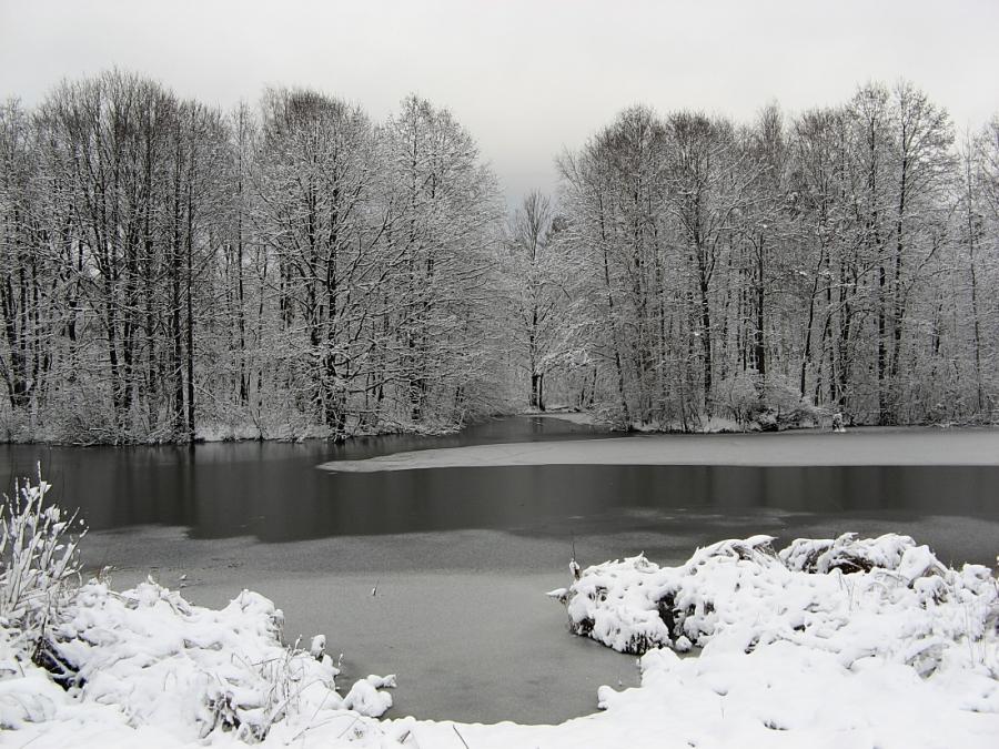 Вот и зима...