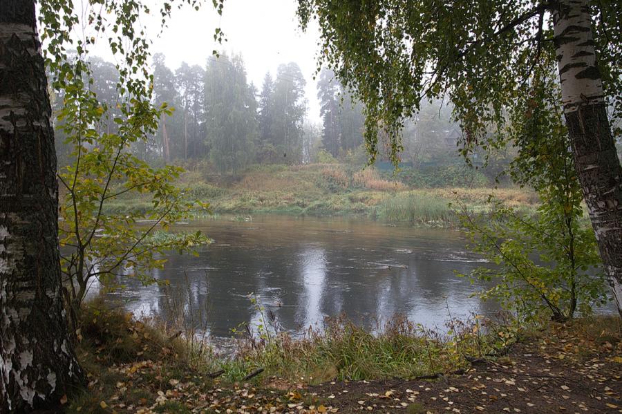 На берегу реки Оредеж