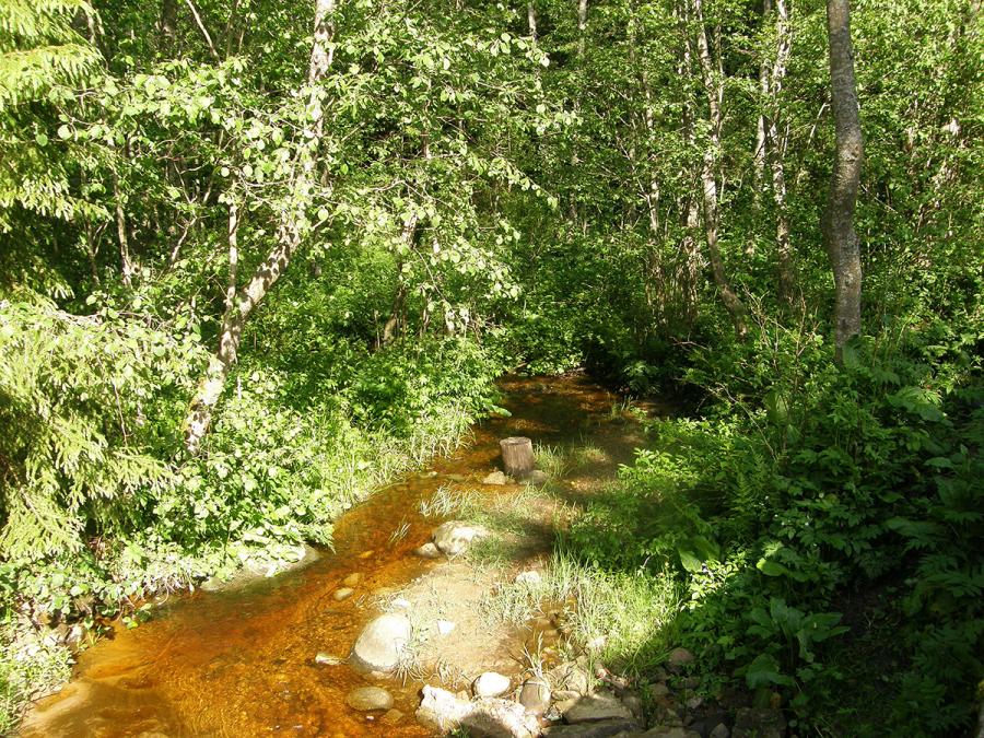 Волга, в своем начальном течении