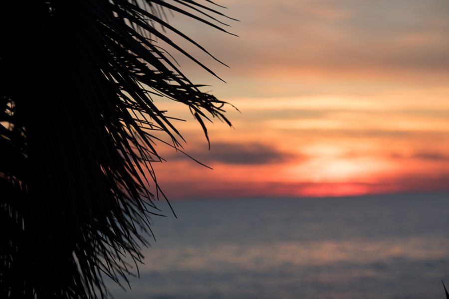 Любуясь закатом