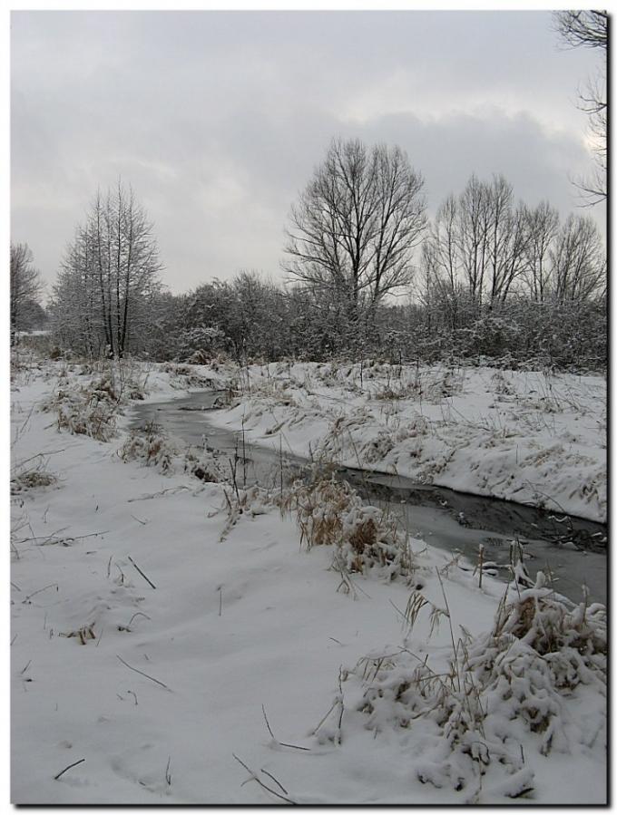 1 января. Первый снег.
