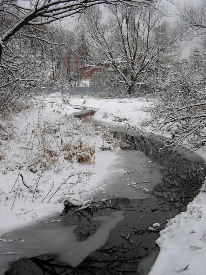 Первый снег. Любосеевка.