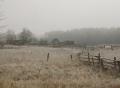 rurallife.jpg