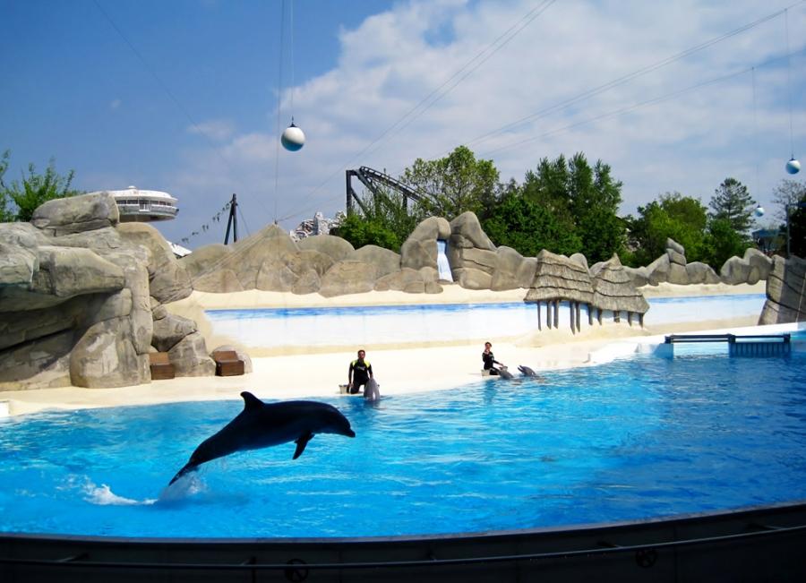 дельфинарий Гардаланд Италия