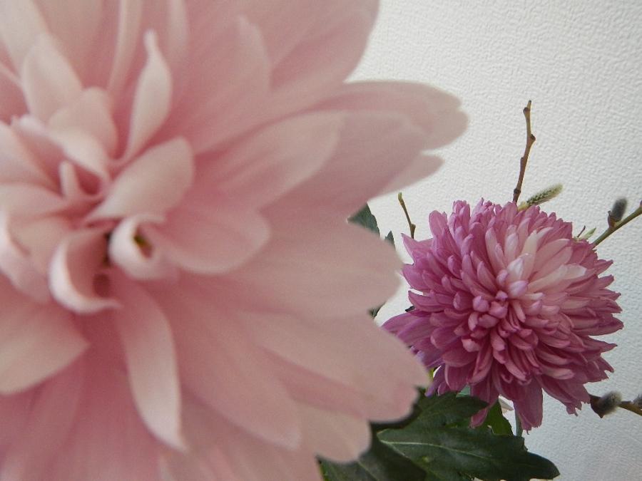 Весенний цвет.