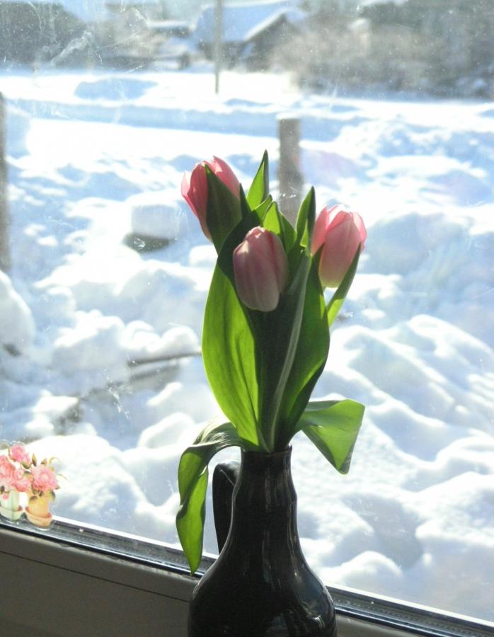 Мысли о весне