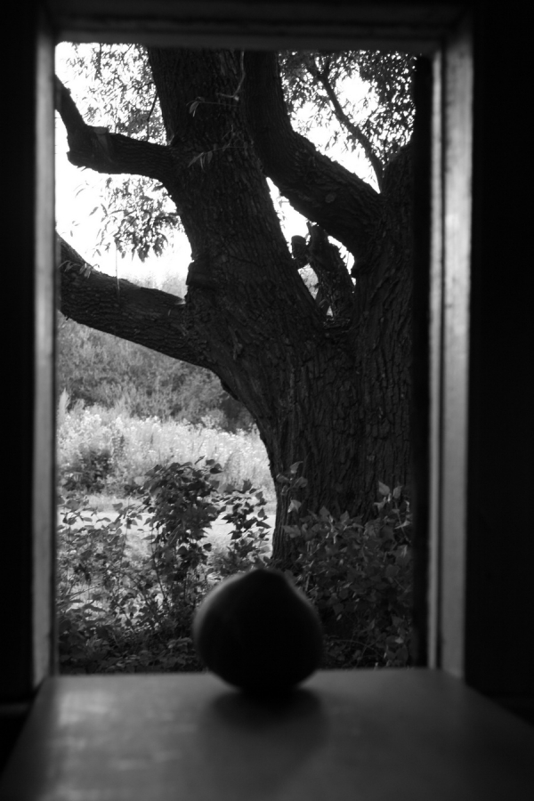 Тыква на окне