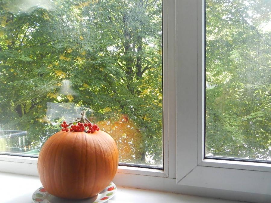 Осень пришла!